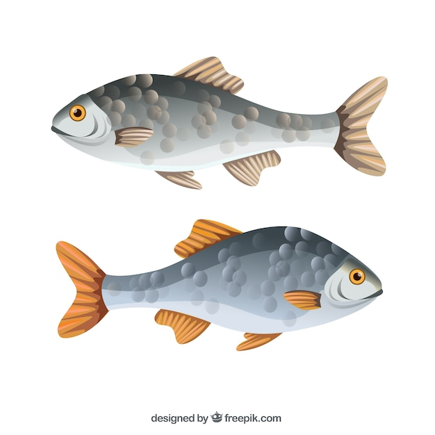 Fishes Free Vector