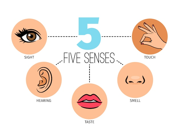 Five human feelings. Premium Vector