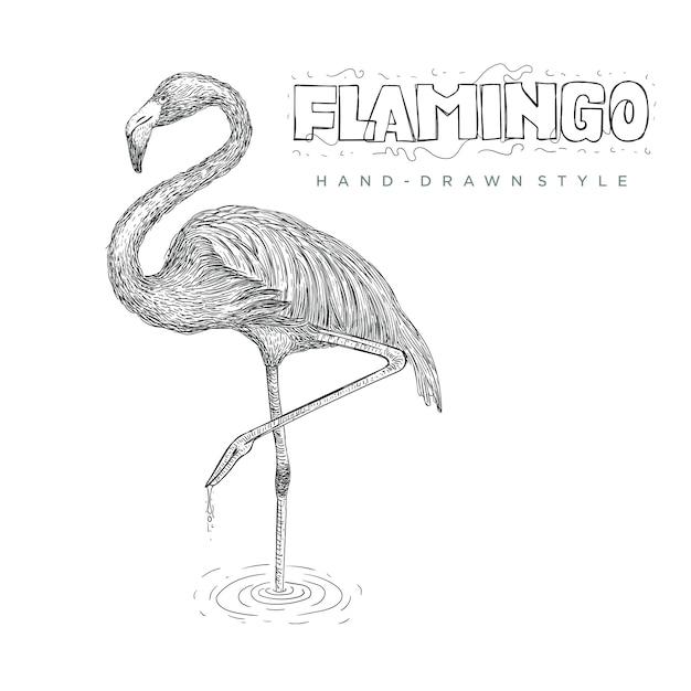片足で水面に立つフラミンゴ。手描き動物イラスト Premiumベクター
