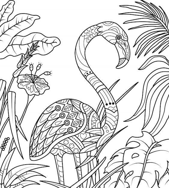 Premium Vector | Flamingo in summer time coloring book