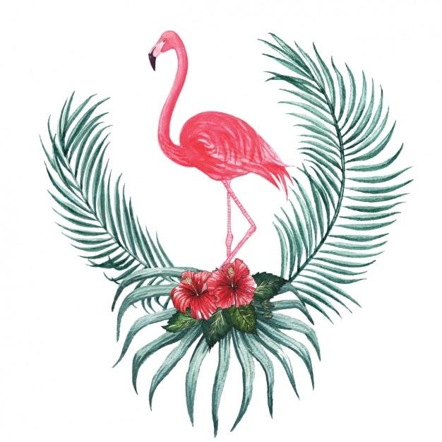 Акварели flamingo декоративный дизайн Бесплатные векторы