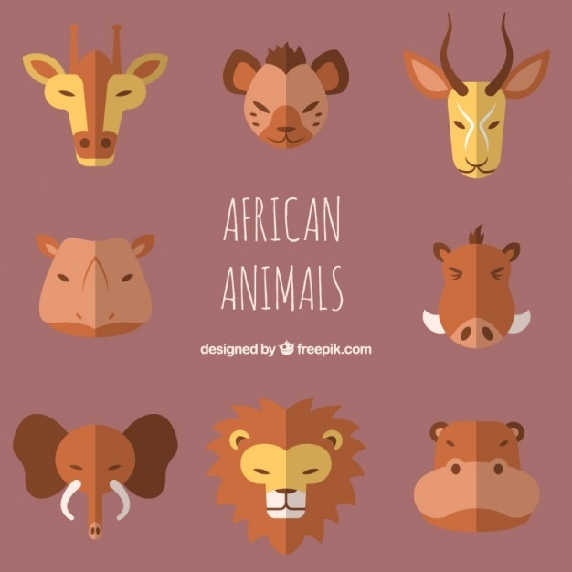 Flat african animal avatars