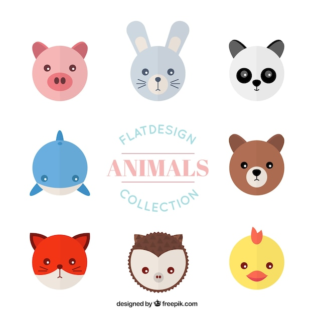 Avatar 2 Animals: Flat Animal Avatar Collection Vector