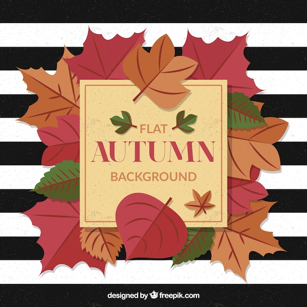 Flat autumn background with leaves and stripes