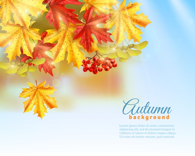 Flat autumn background Free Vector