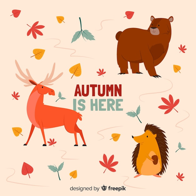 Flat autumn forest animal collection Free Vector