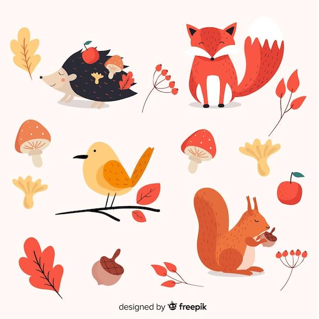 Плоская коллекция осенних лесных животных Бесплатные векторы
