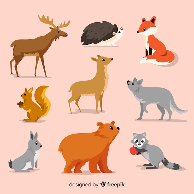 Flat autumn forest animals collection Free Vector