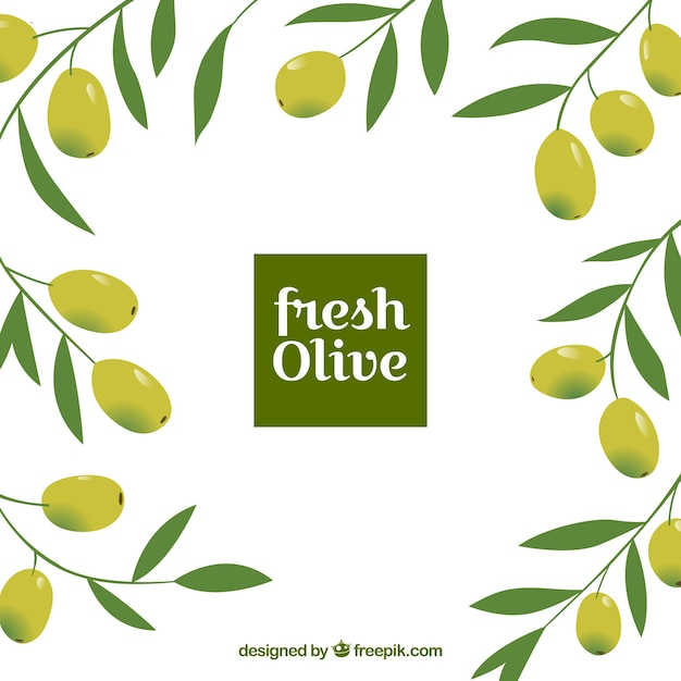 Flat background with decorative olives and leaves Free Vector