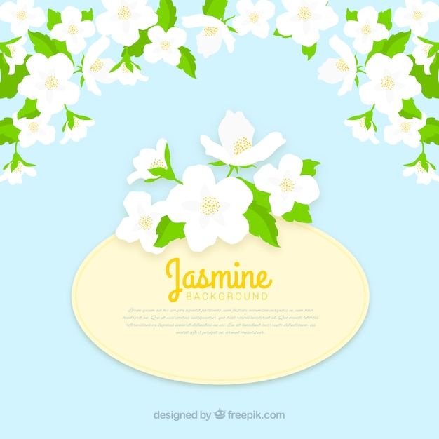 Flat Background With Jasmine Flowers Vector