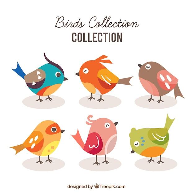 Flat bird collection Free Vector