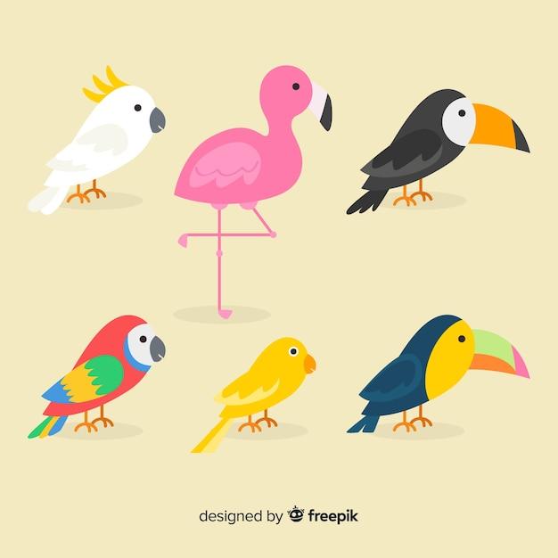 Flat cartoon exotic bird collection Free Vector