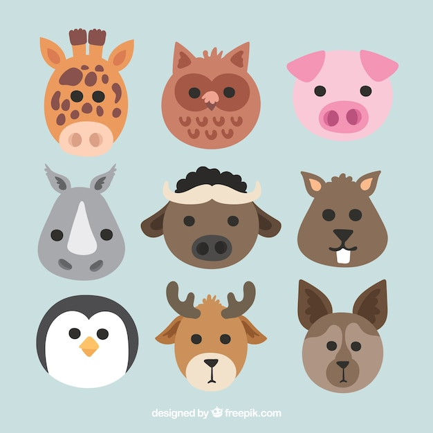 Flat collection of cute animal faces Free Vector