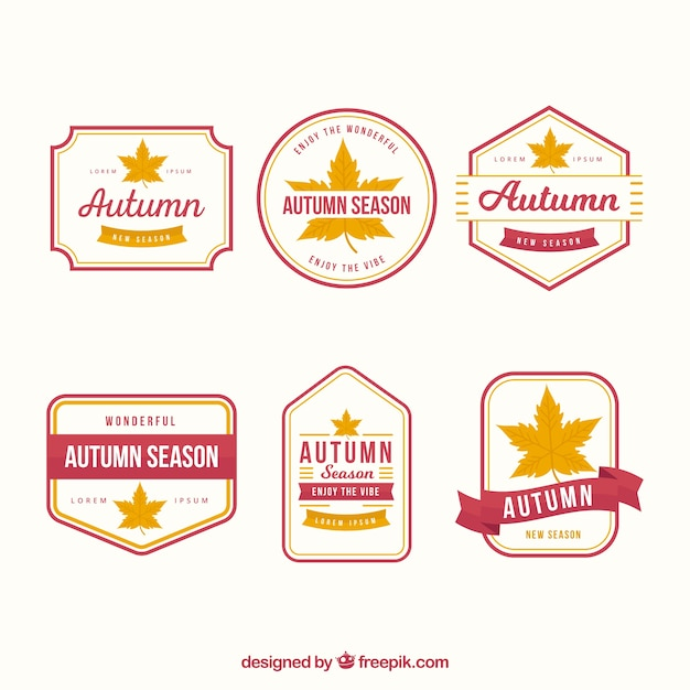Flat collection of autumn labels with classical style