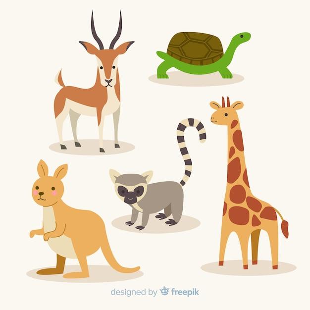 Плоская коллекция экзотических животных Бесплатные векторы