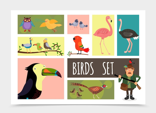 Flat colorful birds collection with hunter owl canary pigeons flamingo ostrich sparrows pheasant parrot toucan cardinal bird isolated  illustration Free Vector