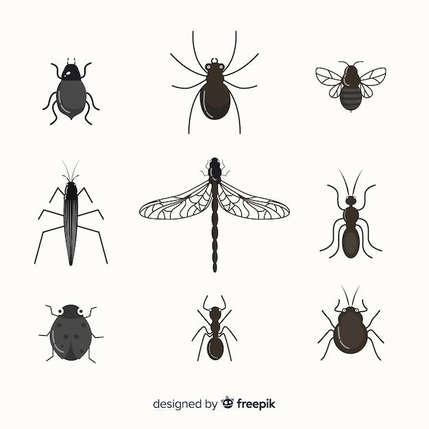Flat colorless insect pack Free Vector