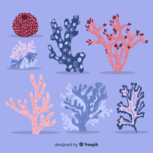 Flat coral collection Free Vector