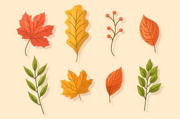 Плоский дизайн осенних листьев установлен Бесплатные векторы