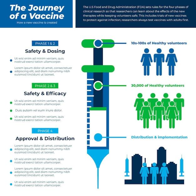 Плоский дизайн инфографики фаз вакцины против коронавируса Бесплатные векторы