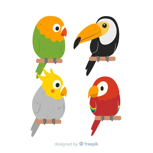 Flat design exotic birds collection Free Vector