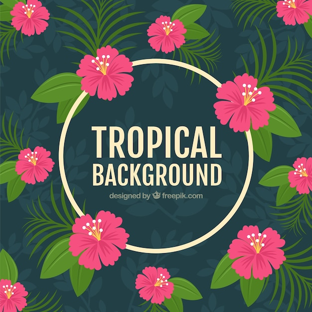 Flat design pink tropical flowers\ background