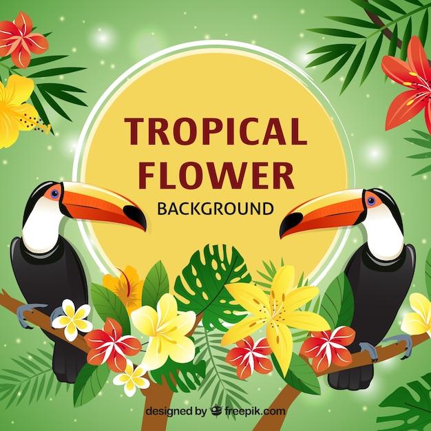 Disegno pianeggiante tucano sfondo fiore tropicale Vettore gratuito