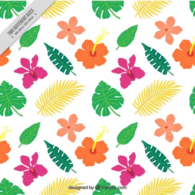 Flat exotic colored flowers and leaves\ background