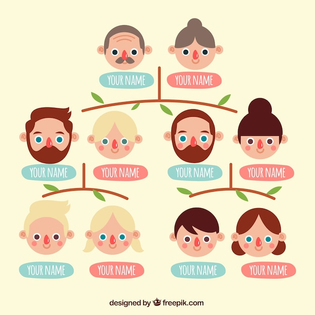 download vector flat family tree with blue and pink labels