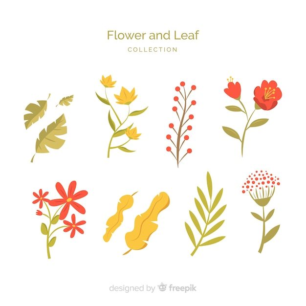 Flat flower and leaf collection Free Vector