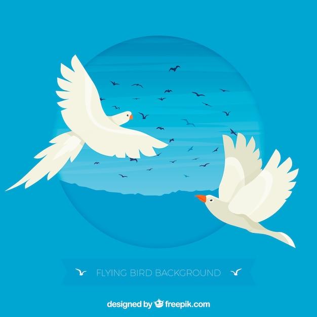 Flat flying bird background