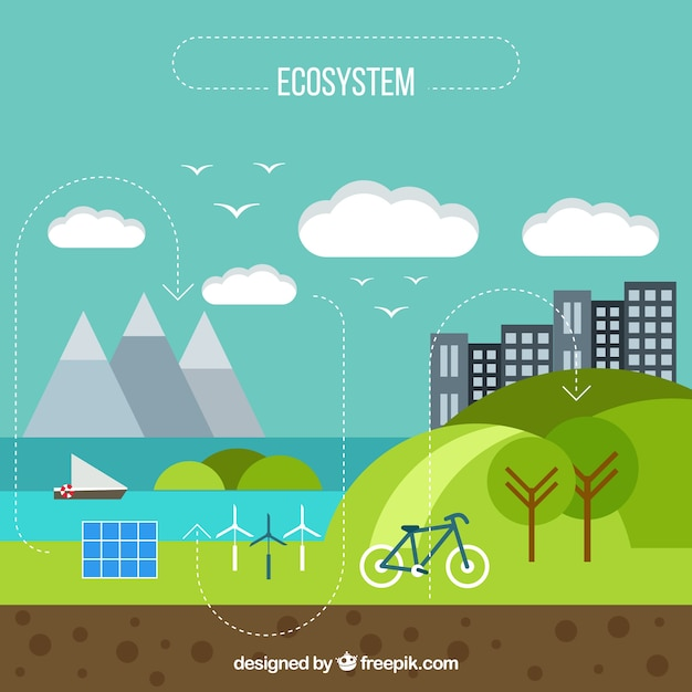 Flat infographic ecosystem concept Free Vector