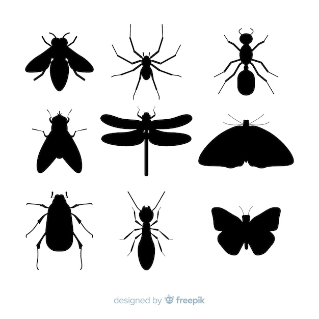 Flat insect silhouette collection Free Vector