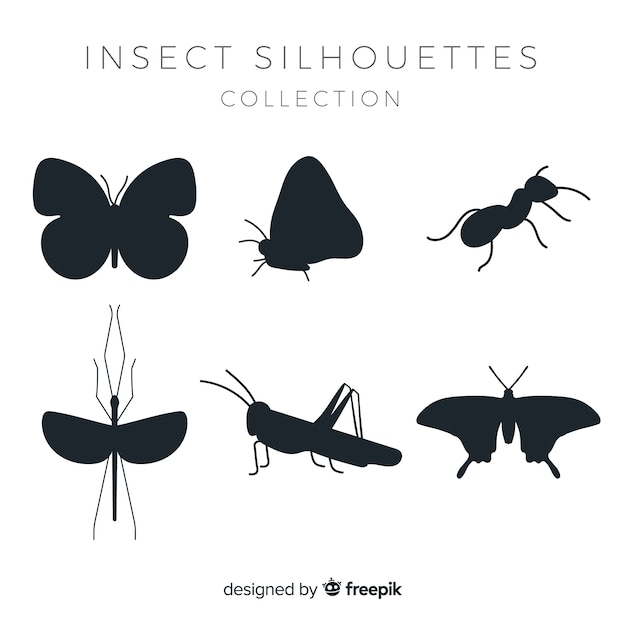 Flat insect silhouettes collection Free Vector