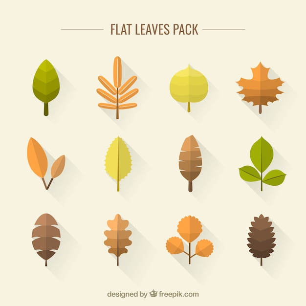Flat leaves pack