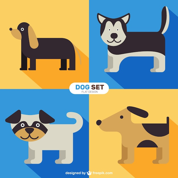 Flat lovely dog set