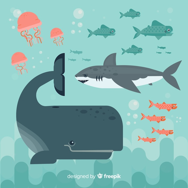 Flat marine life character collection Free Vector