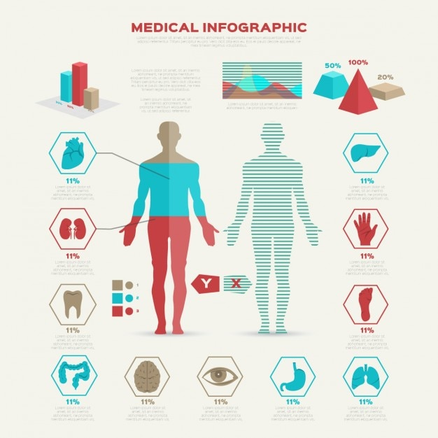 Flat Medical Infographic Illustration Free Vector