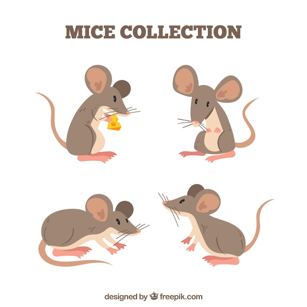 Сбор плоских мышей с разными позами Premium векторы