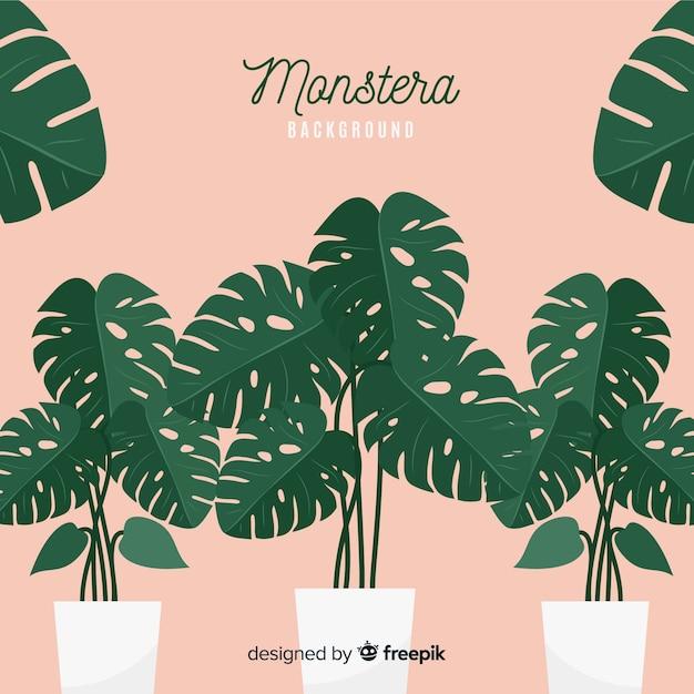 Flat monstera leaves in flowerpots background Free Vector