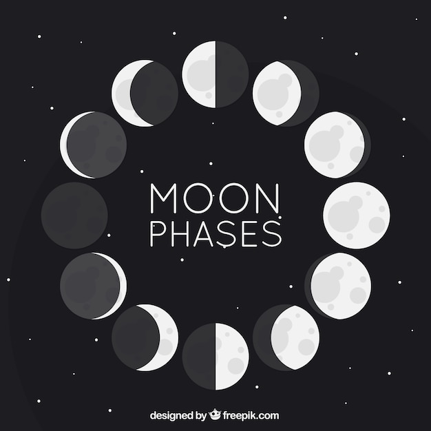 Flat moon phases Free Vector