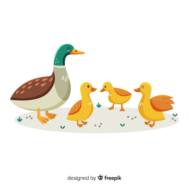 Flat mother duck and ducklings on grass Free Vector
