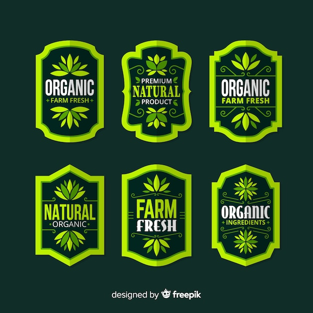 Flat organic fruit label set Free Vector