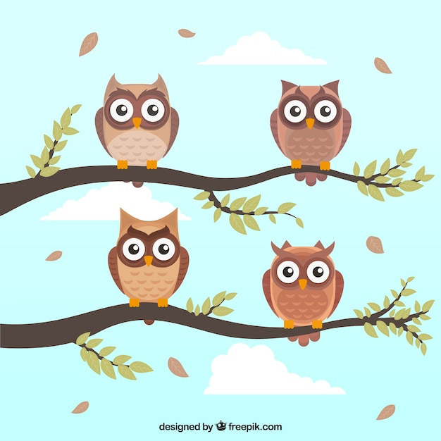 Flat owl collection Free Vector