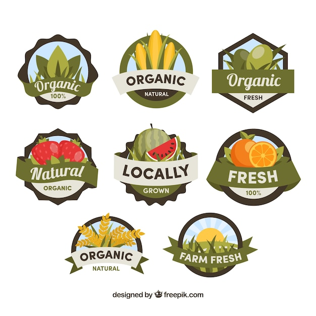 Flat selection of great flat labels of organic food Free Vector