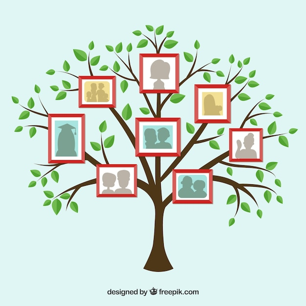 Flat tree with frames on the wall Free Vector
