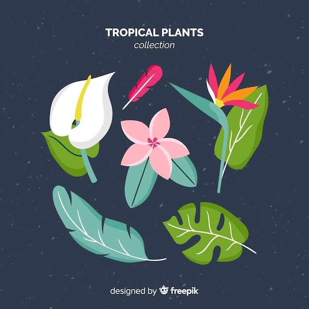Flat tropical flowers and leaves pack Free Vector
