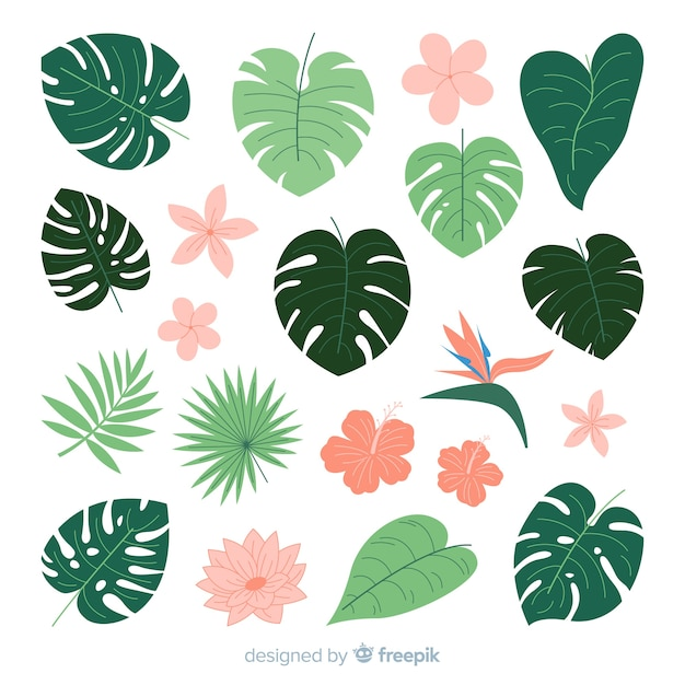 Flat tropical flowers and leaves Premium Vector