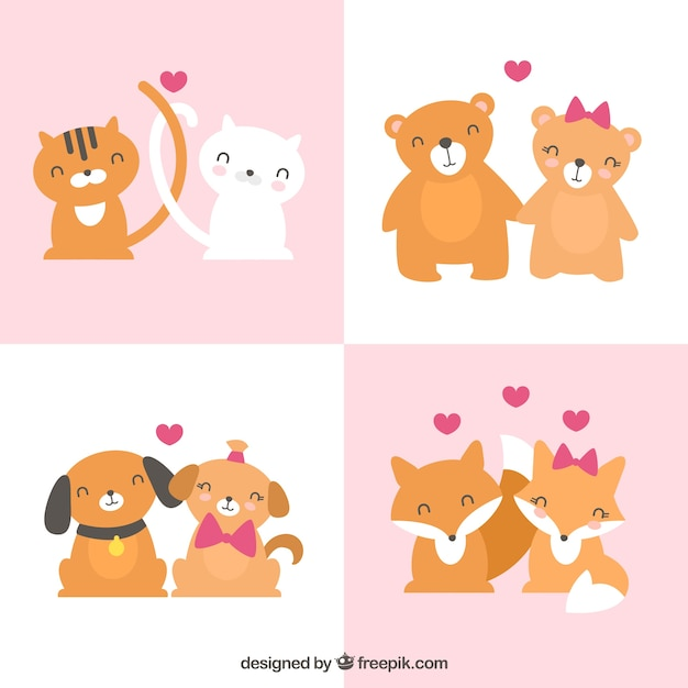 Flat valentine\'s day animal couple\ collection