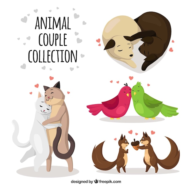 Flat valentine\'s day animal couples\ collection